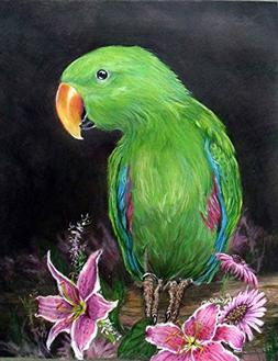 Custom Portrait, Electus Parrot or any Pet Drawing in Colore