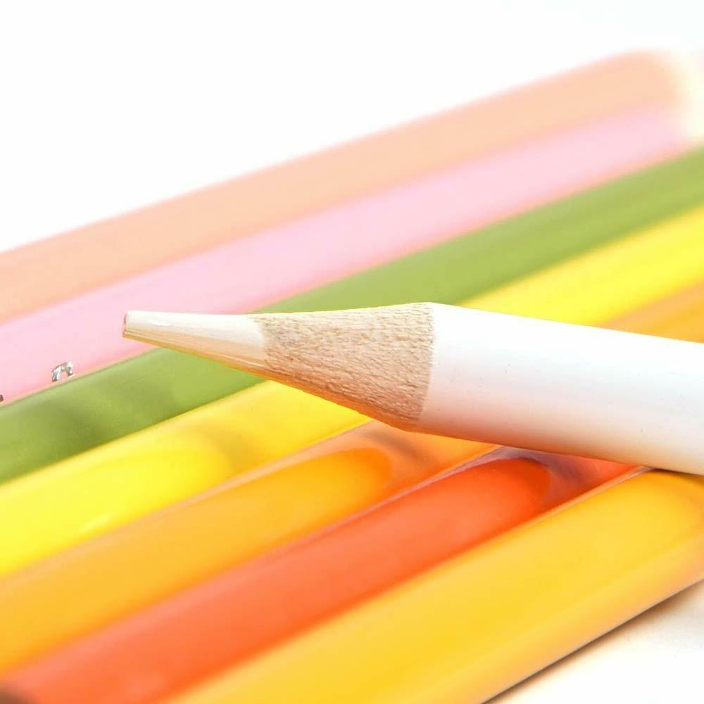 120 Premier Pencils Artist Case