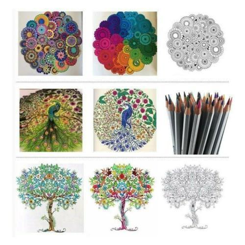 36 Marco Art Non-toxic Pencils Set Artist Sketch
