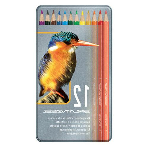 artists coloured pencil tin set of 12