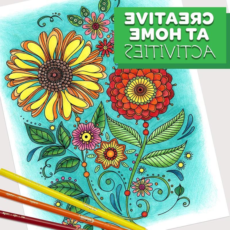 Crayola Colored Coloring, Teens, 50