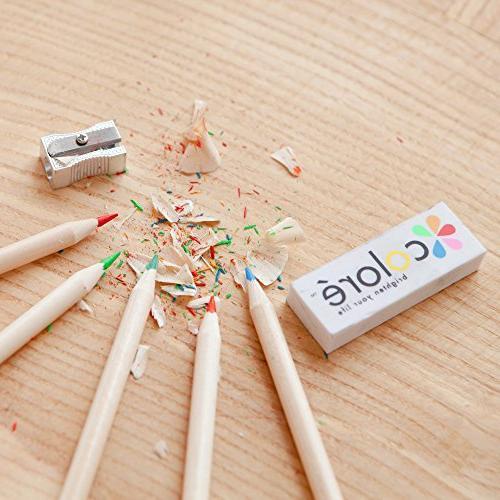 Colore Drawing Pencils Eraser & Sharpener