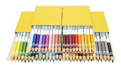 Coloring Book Essentials Count