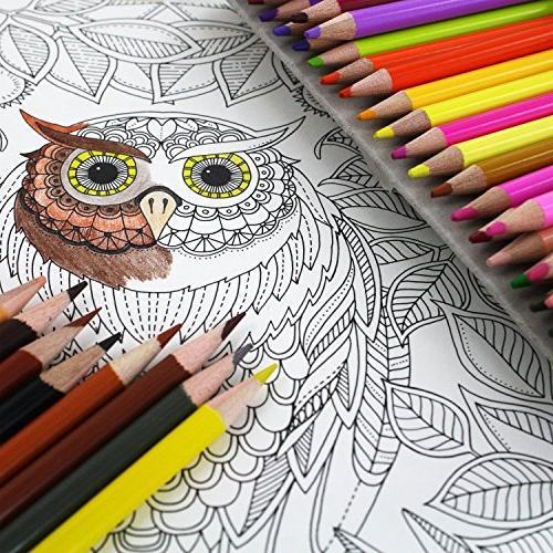 Thornton's Art Soft Grade Pencil Coloring Assorted