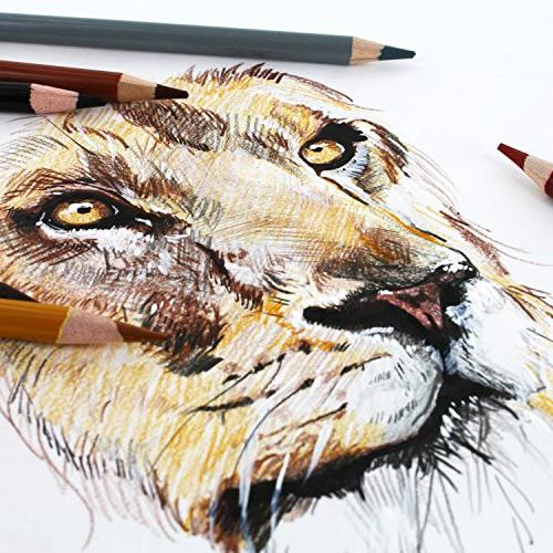 Thornton's Art Premium Super Colored Pencil 50 Count