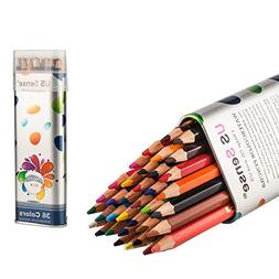 US Sense Colored Pencils Watercolor Coloring Pencils 36 Art